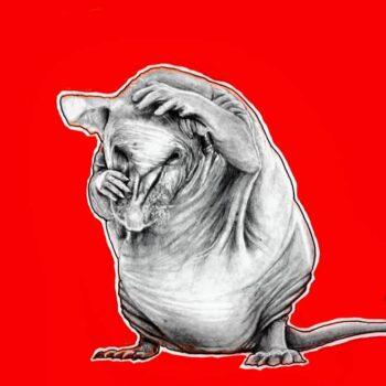 skinny-pig-original-by-original-artwork-by-adriana-artmeier-174434-adrianaartmeier