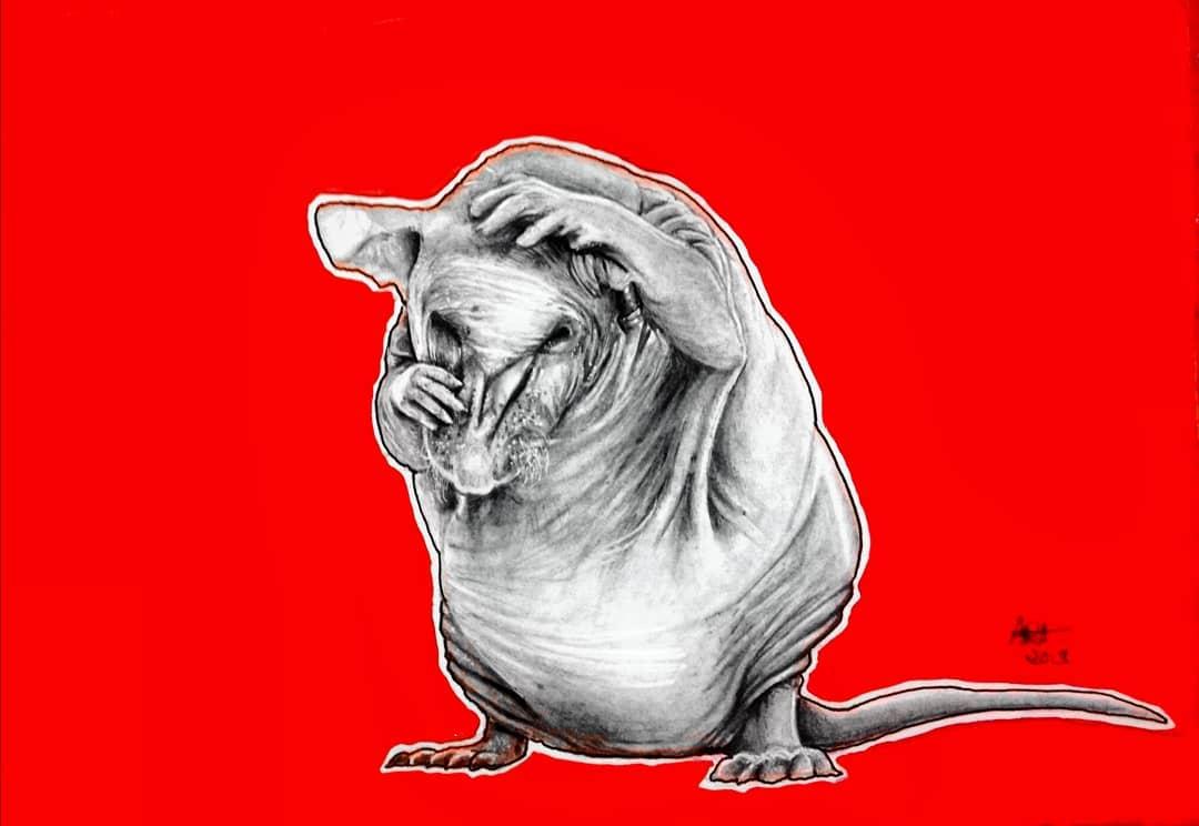 Rat Original By Original Artwork By Adriana Artmeier