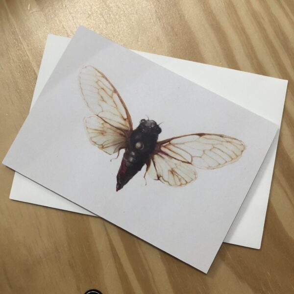 italian-mountain-cicada-greeting-card-by-skye-oshea-prahran-43492