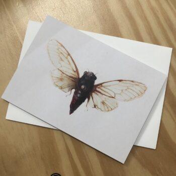 italian-mountain-cicada-greeting-card-by-skye-oshea-prahran-43492