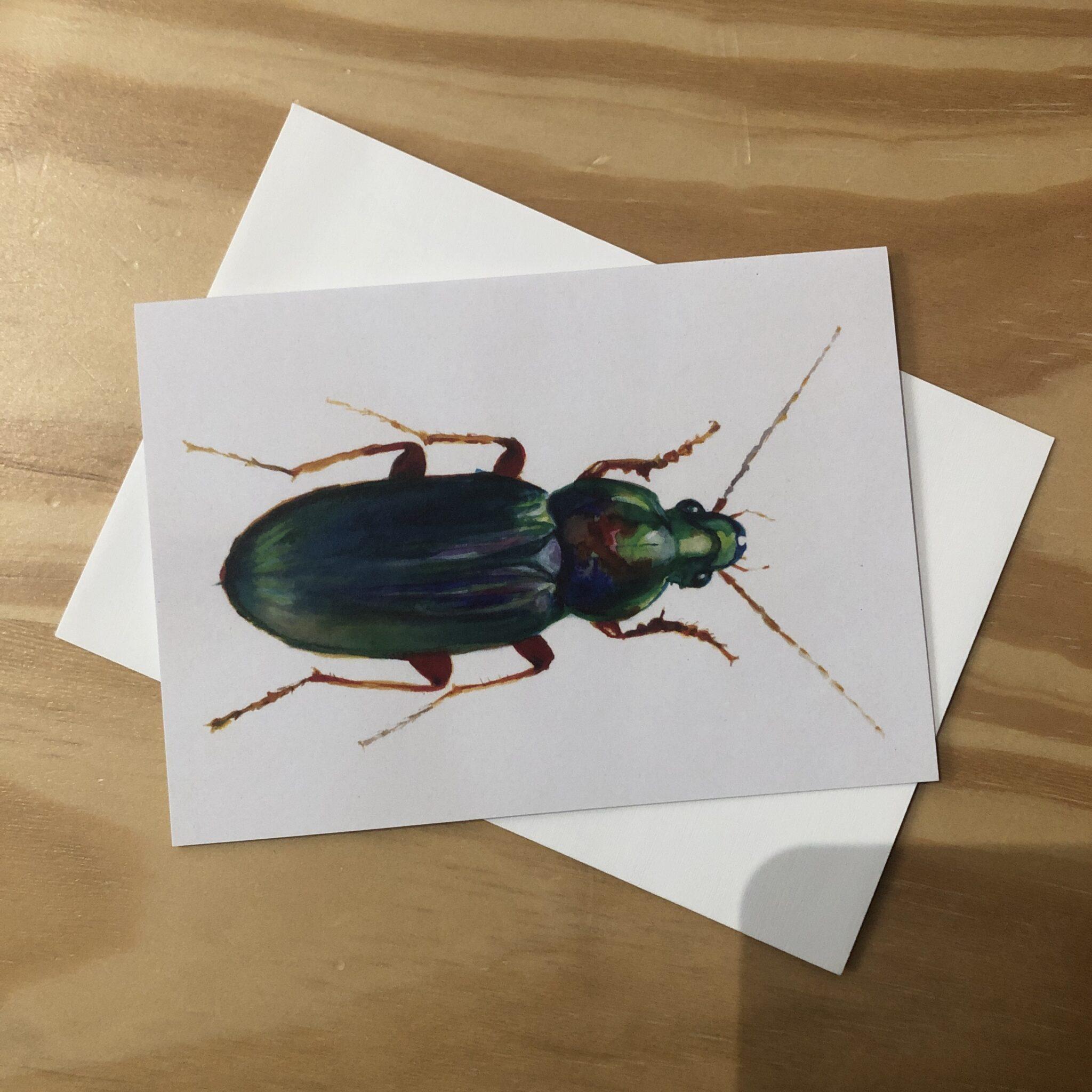 Ground Beetle Greeting Card By Skye O'Shea (Prahran)