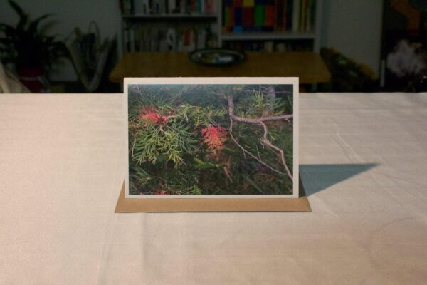greeting-card-grevillea-robyn-gordon-tallebudgera-creek-by-genevieve-engelhardt-935172-genengelhardt