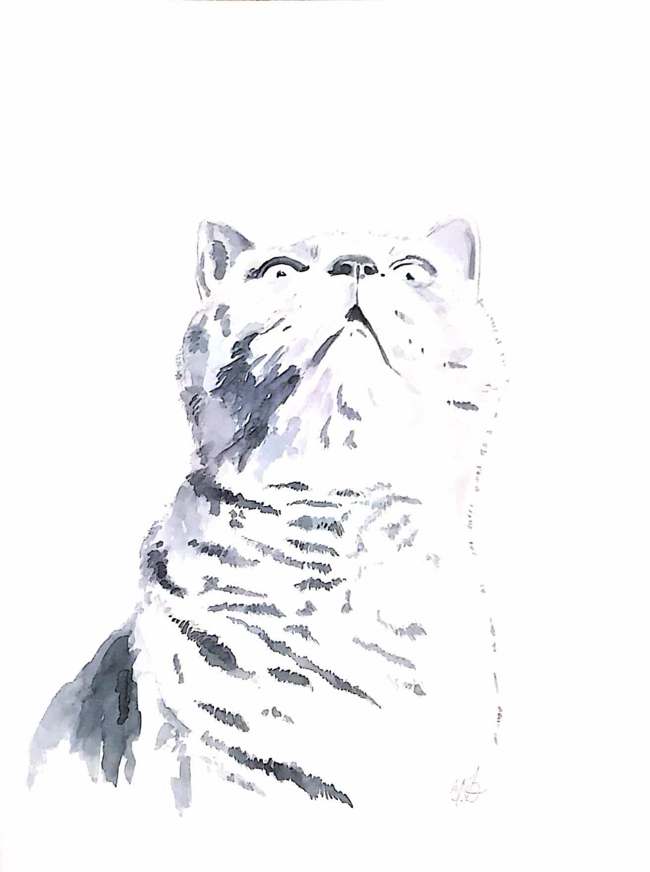 Winston Looks Up – Original Water Colour Cat Painting By Amanda Wells
