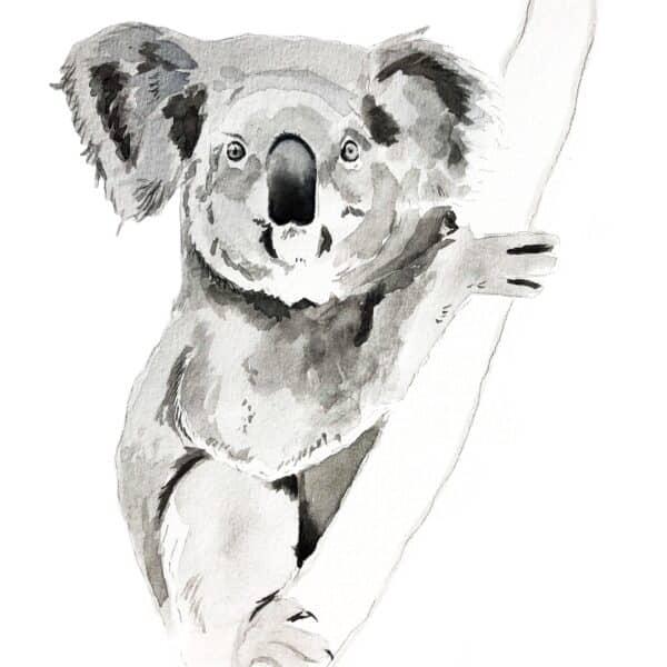 Koala painting Watercolour framed original - by Amanda Wells Art