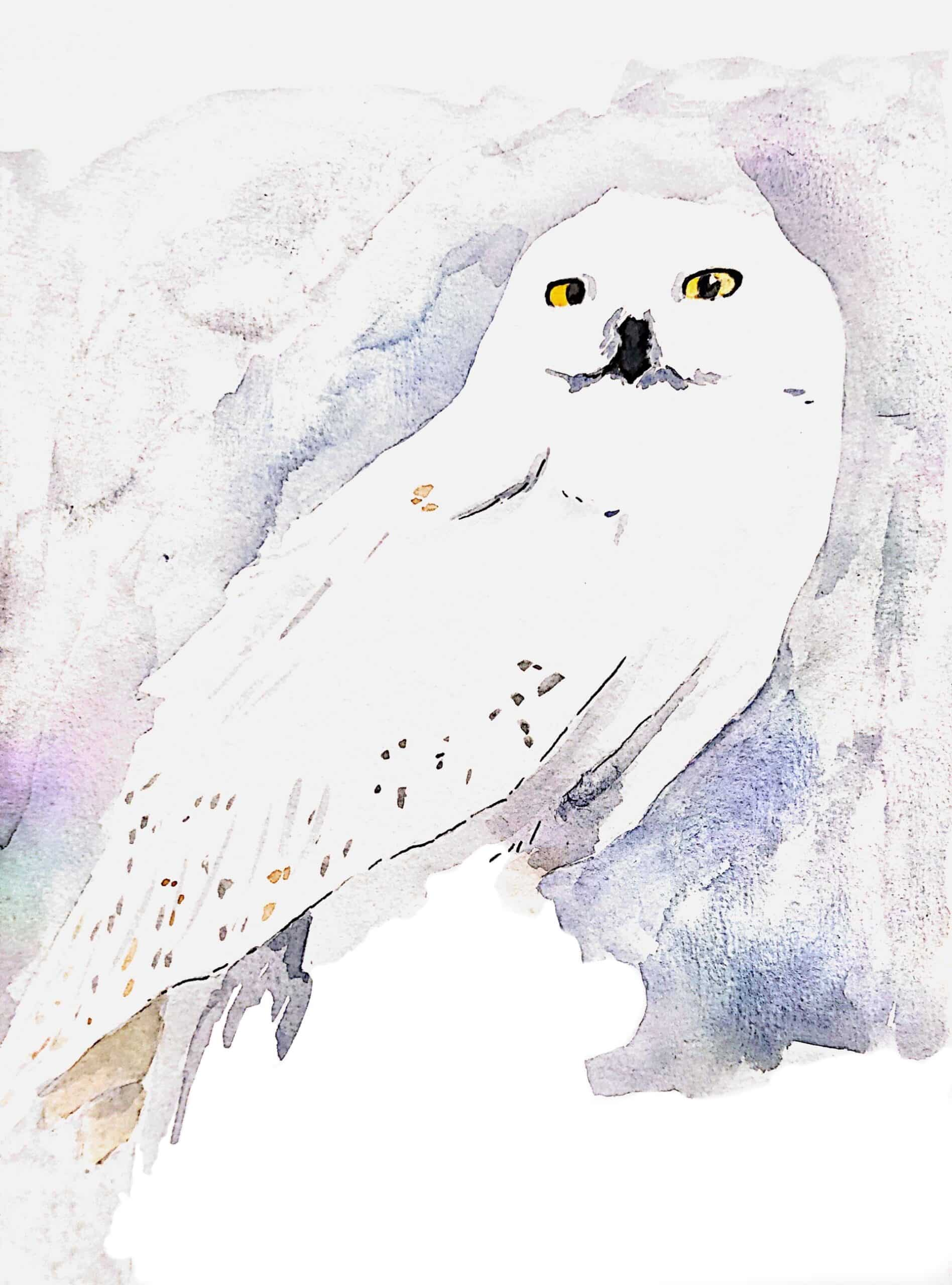 'Hedwig' Watercolour Painting – By Amanda Wells Art