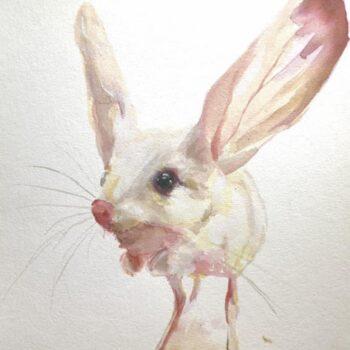 desert-mouse-watercolour-by-skye-oshea--ellemay.michael