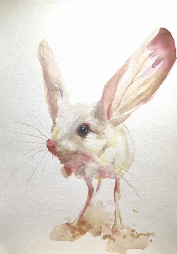Desert Mouse Watercolour By Skye O'Shea