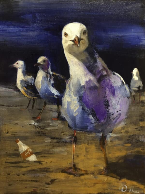 feathers-amp-footprints-by-skye-oshea