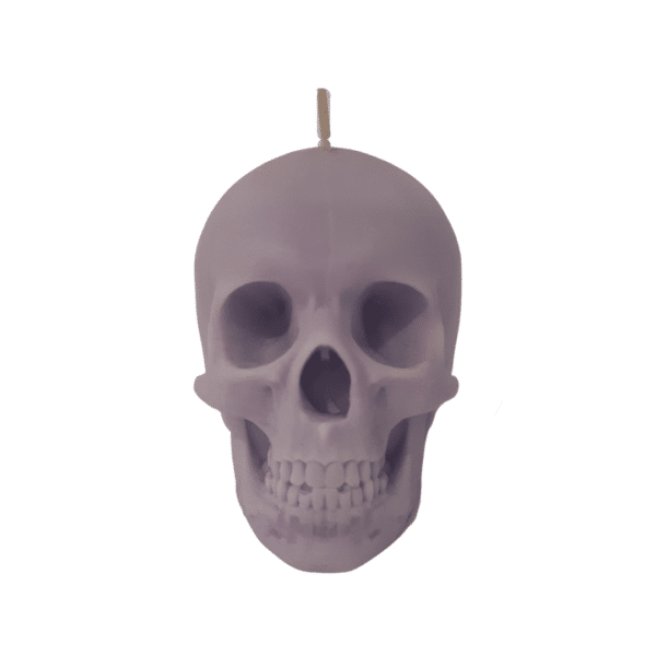 Skull Candle purple by Luxtacor