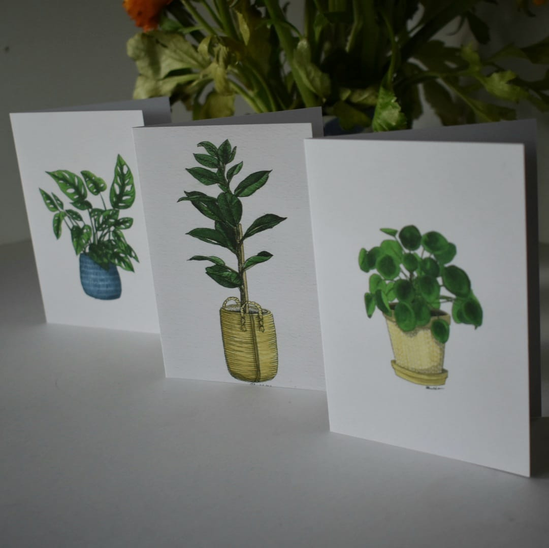 Potted Plants Greeting Cards Three Card Pack Sarah Sheldon Art By A Vibrant Nest