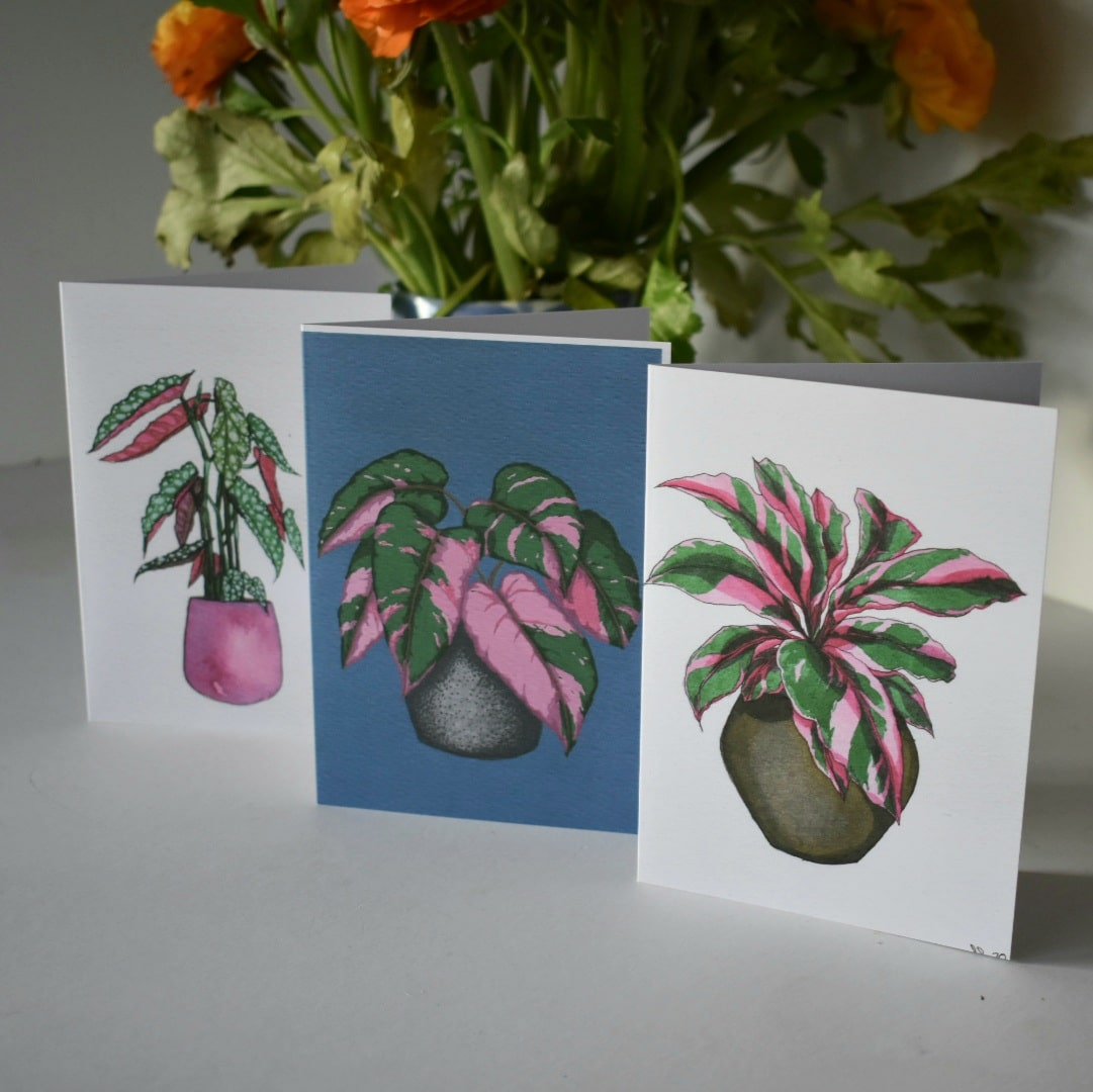 'Pink Plants' Greeting Cards Three Card Pack Botanical Collection Sarah Sheldon Art By A Vibrant Nest