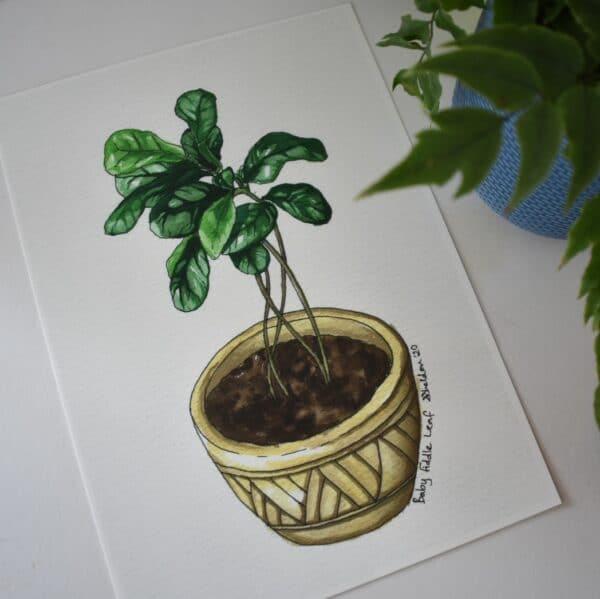 baby-fiddle-leaf-fig-botanical-collection-art-print-sarah-sheldon-art-by-a-vibrant-nest-by-avibrantnest