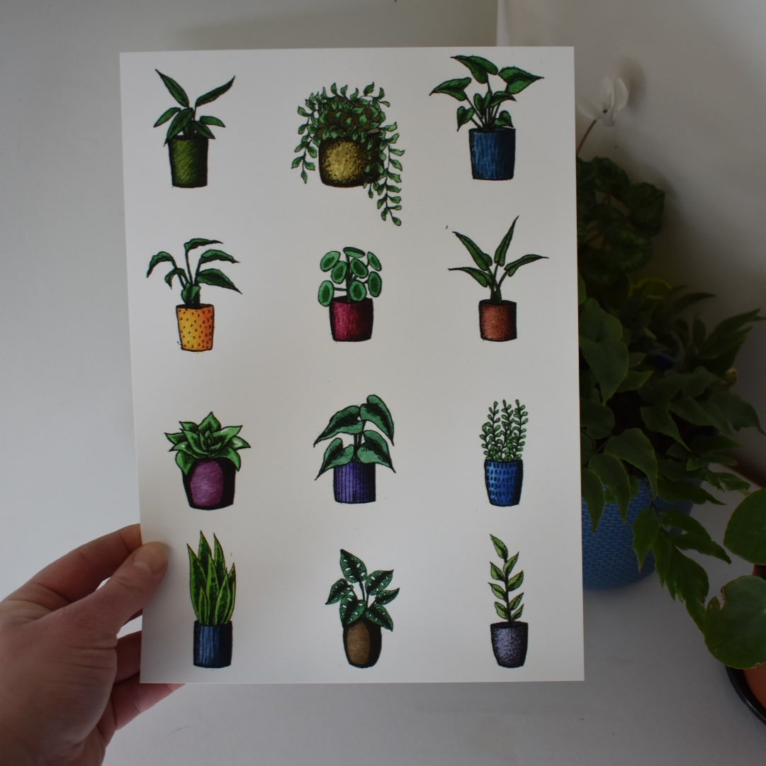 'Variety Potted Plants' A4 Art Print Botanical Collection Sarah Sheldon Art By A Vibrant Nest