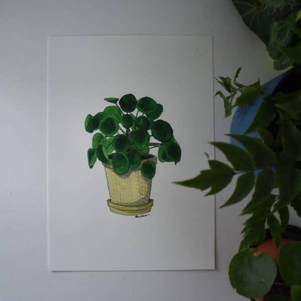 pilea-botanical-collection-art-print-sarah-sheldon-art-by-a-vibrant-nest-by-avibrantnest