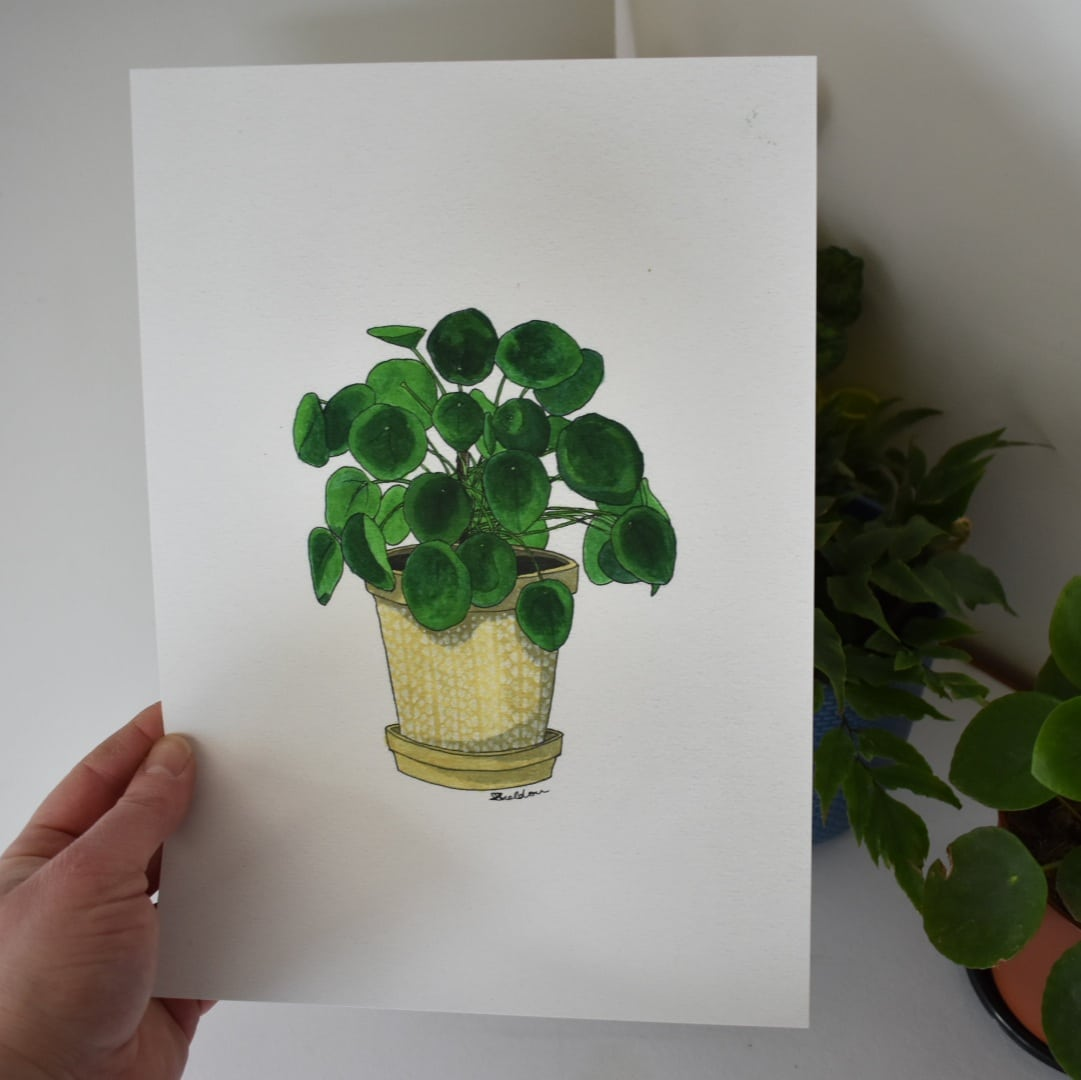 'Pilea' A4 Art Print Botanical Collection Sarah Sheldon Art By A Vibrant Nest
