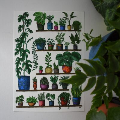 plant-shelfie-2-monstera-botanical-collection-art-print-sarah-sheldon-art-by-a-vibrant-nest-by-avibrantnest