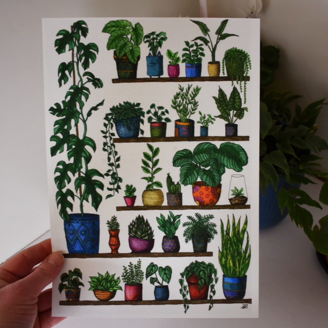 'Plant Shelfie 2 Monstera' A4 Art Print Botanical Collection Sarah Sheldon Art By A Vibrant Nest