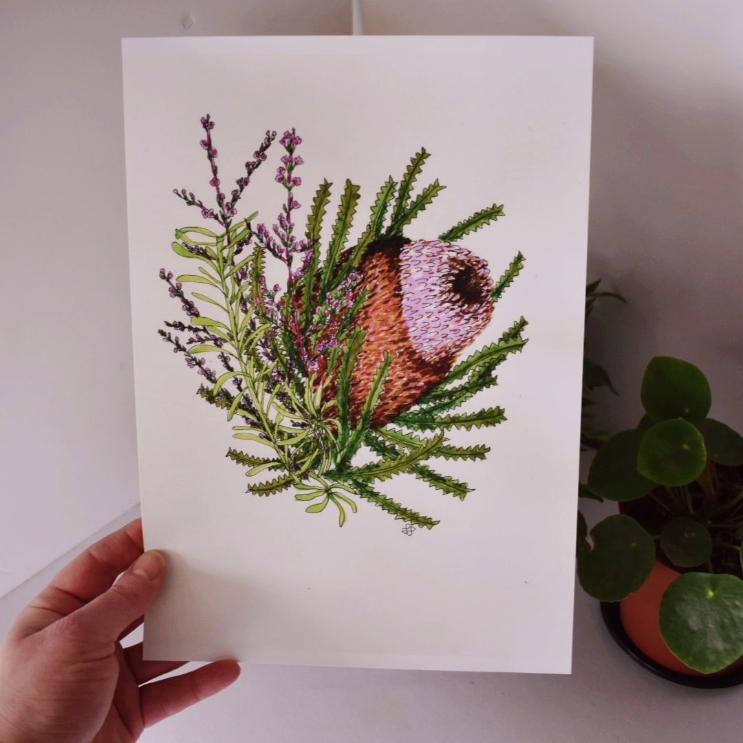 'Banksia 1' A4 Art Print Botanical Collection Sarah Sheldon Art By A Vibrant Nest