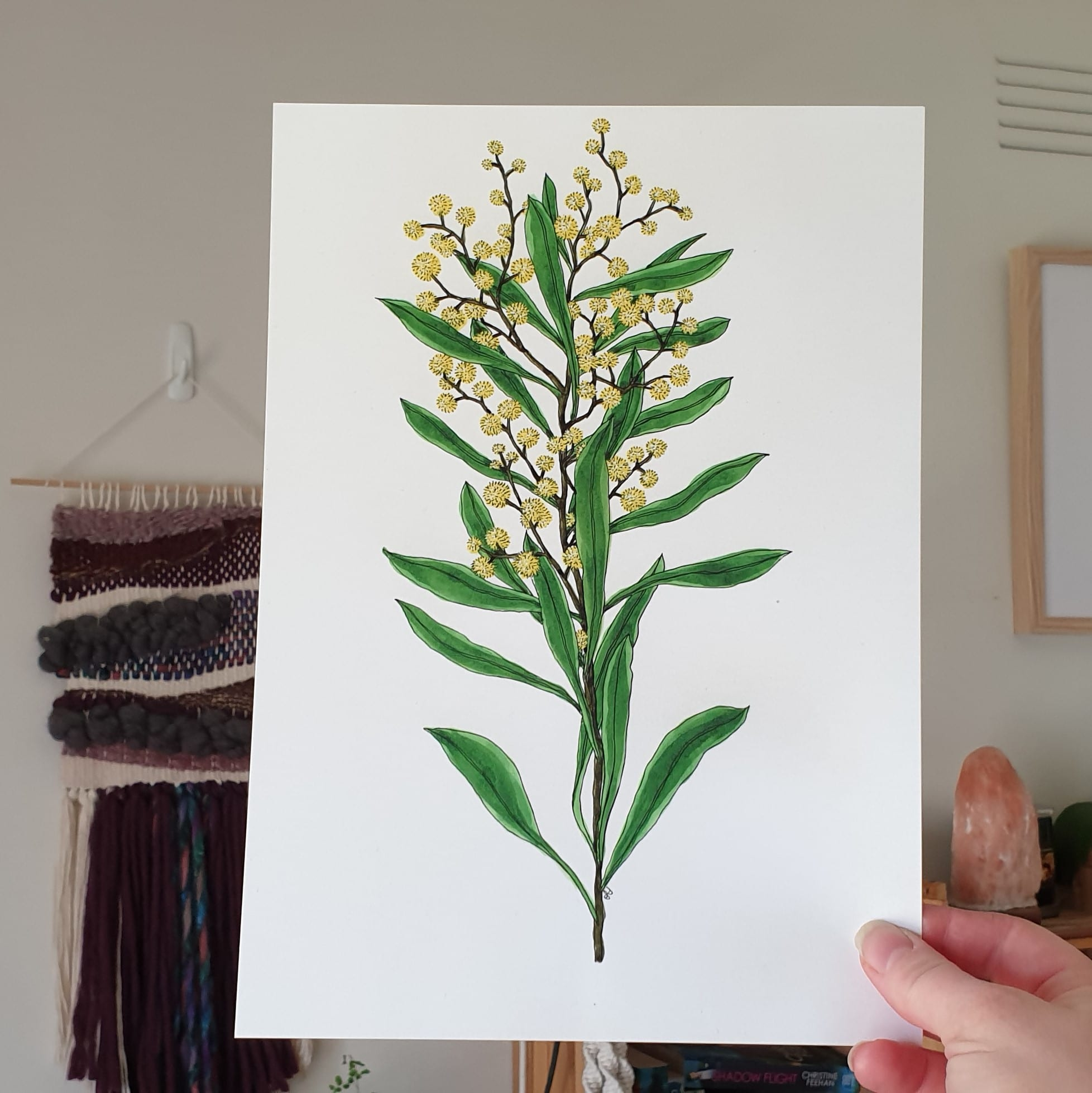 'Wattle 2' A4 Art Print Botanical Collection Sarah Sheldon Art By A Vibrant Nest