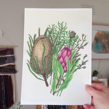 protea-amp-banksia-a4-art-print-botanical-collection-sarah-sheldon-art-by-a-vibrant-nest-by-avibrantnest