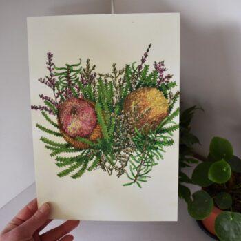 banksia-2-a4-art-print-botanical-collection-sarah-sheldon-art-by-a-vibrant-nest-by-avibrantnest