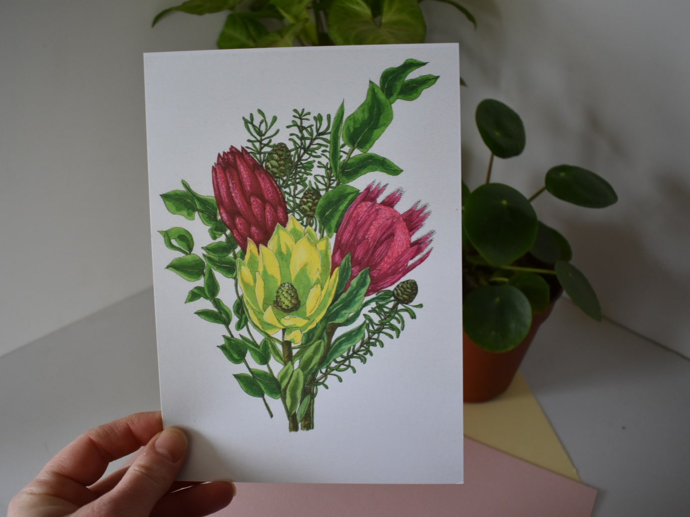 'Protea Bunch' A4 Art Print Botanical Collection Sarah Sheldon Art By A Vibrant Nest