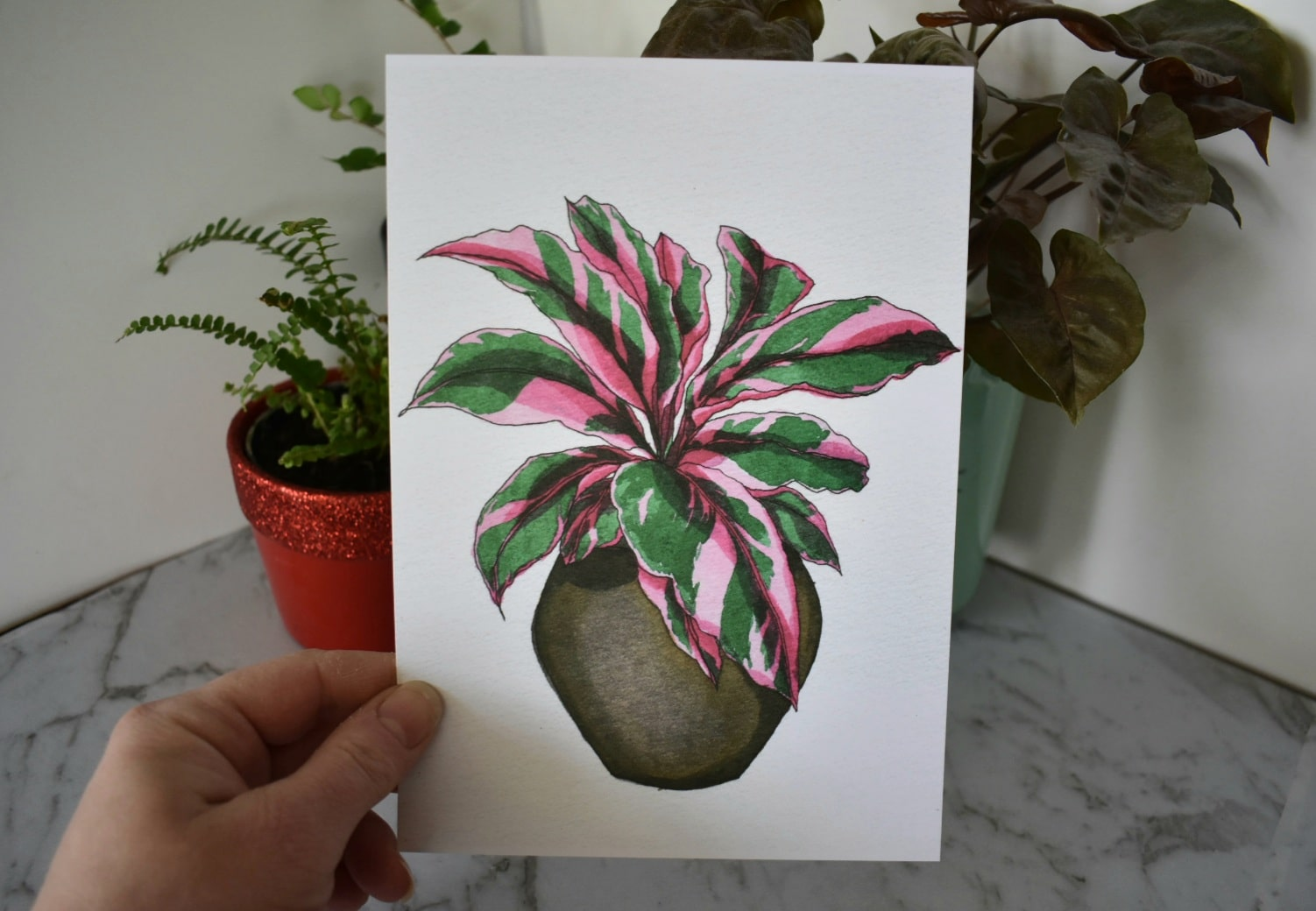 'Pink Calathea' A5 Art Print Botanical Collection Sarah Sheldon Art By A Vibrant Nest