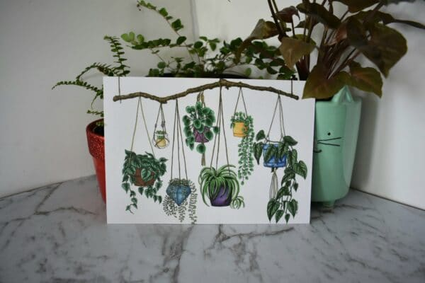 hanging-plants-art-print-botanical-collection-sarah-sheldon-art-by-a-vibrant-nest-by-avibrantnest