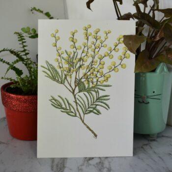 wattle-1-art-print-botanical-collection-sarah-sheldon-art-by-a-vibrant-nest-by-avibrantnest