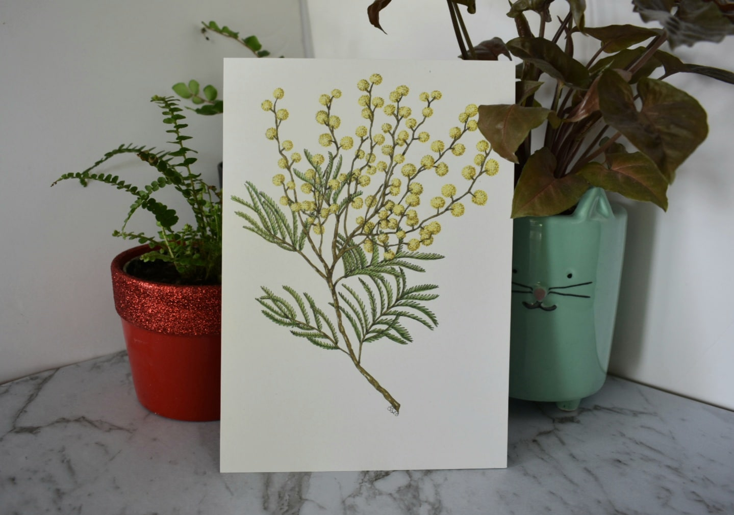 'Wattle 1' A5 Art Print Botanical Collection Sarah Sheldon Art By A Vibrant Nest