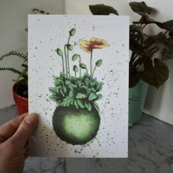 kokedama-botanical-collection-art-print-sarah-sheldon-by-a-vibrant-nest-by-avibrantnest