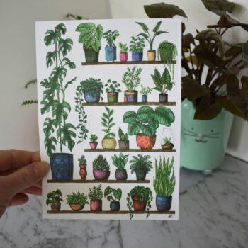 shelfie-2-monstera-botanical-collection-art-print-sarah-sheldon-art-by-a-vibrant-nest-by-avibrantnest