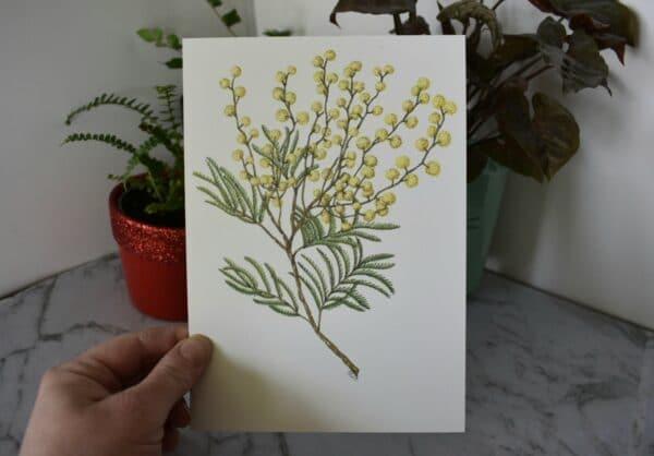 wattle-botanical-collection-art-print-sarah-sheldon-art-by-a-vibrant-nest-by-avibrantnest