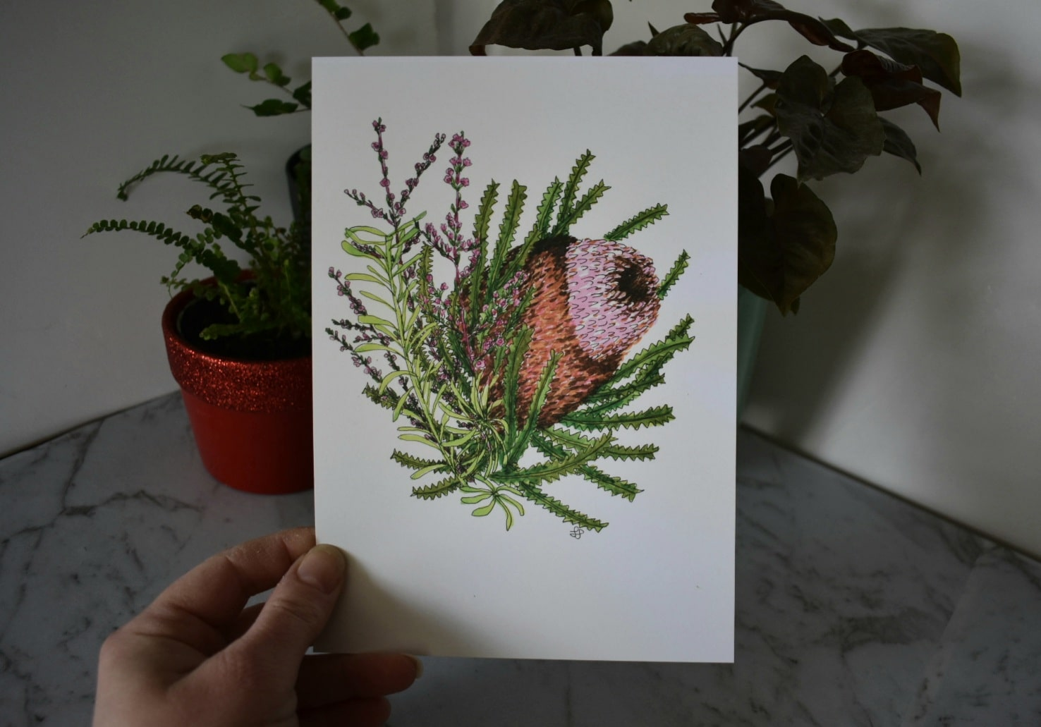 'Banksia 1' A5 Art Print Botanical Collection Sarah Sheldon Art By A Vibrant Nest