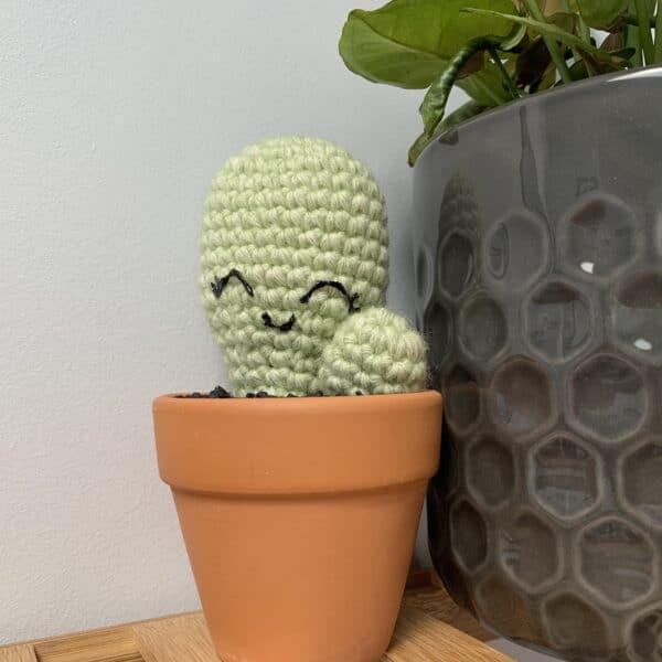 crochet-pear-catus-by-ernie-spackler-by-erniespackler