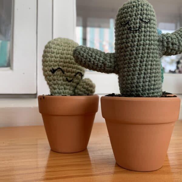 saguaro-crochet-cactus-by-ernie-spackler-by-erniespackler