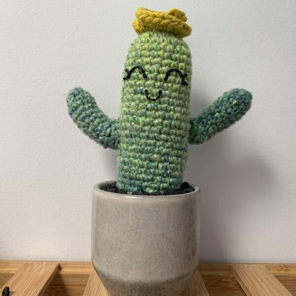 saguaro-catus-yellow-rosette-by-ernie-spackler-by-erniespackler