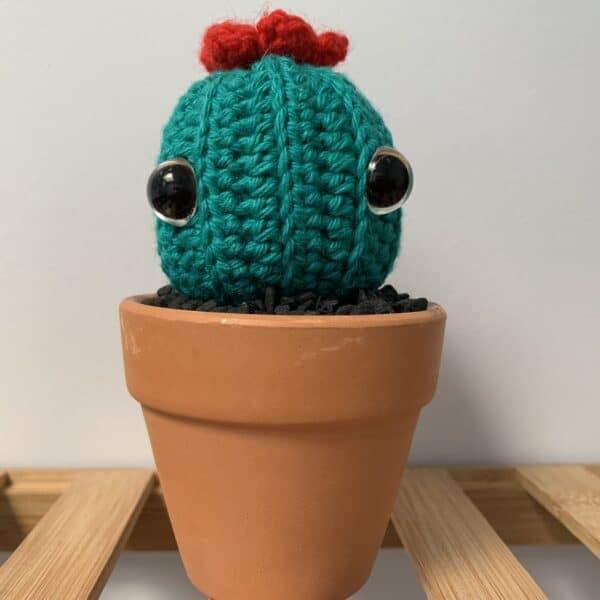 barrel-cactus-by-ernie-spackler-by-erniespackler