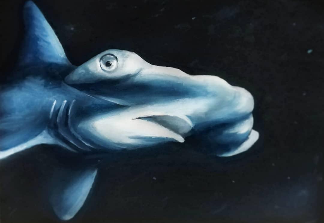 Hammerhead Shark By ADRIANA ARTMEIER