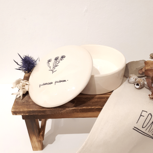 Ceramic Jewellery dish with lid and painting puttenaea palacea by Forrest Girl