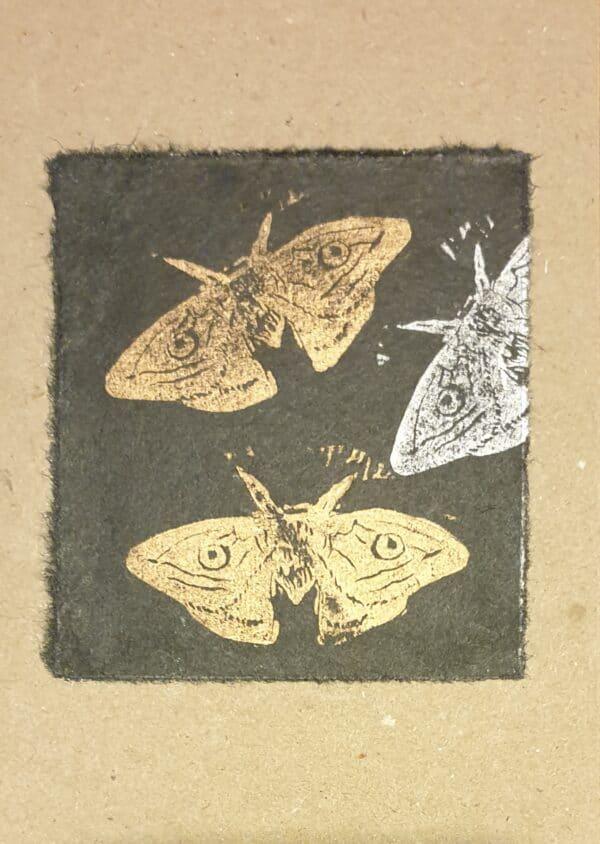 moth-card-by-wonga-press-by-Kaz