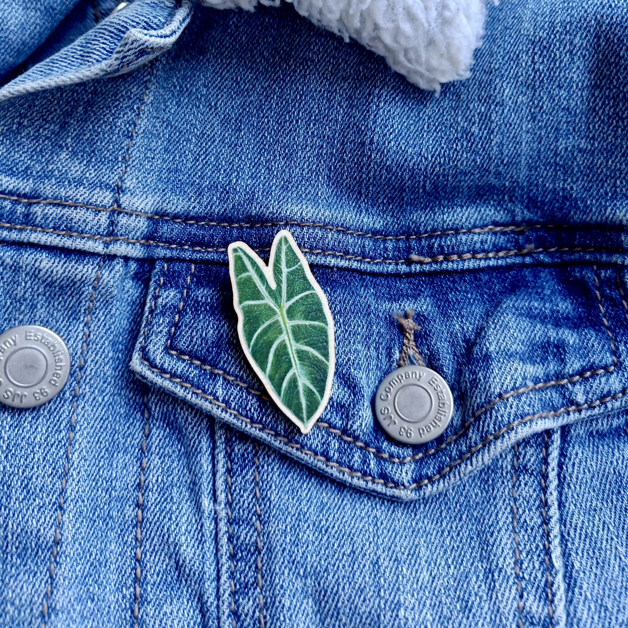 Alocasia Amazonica Wooden Pin By Rebecca Pidgeon