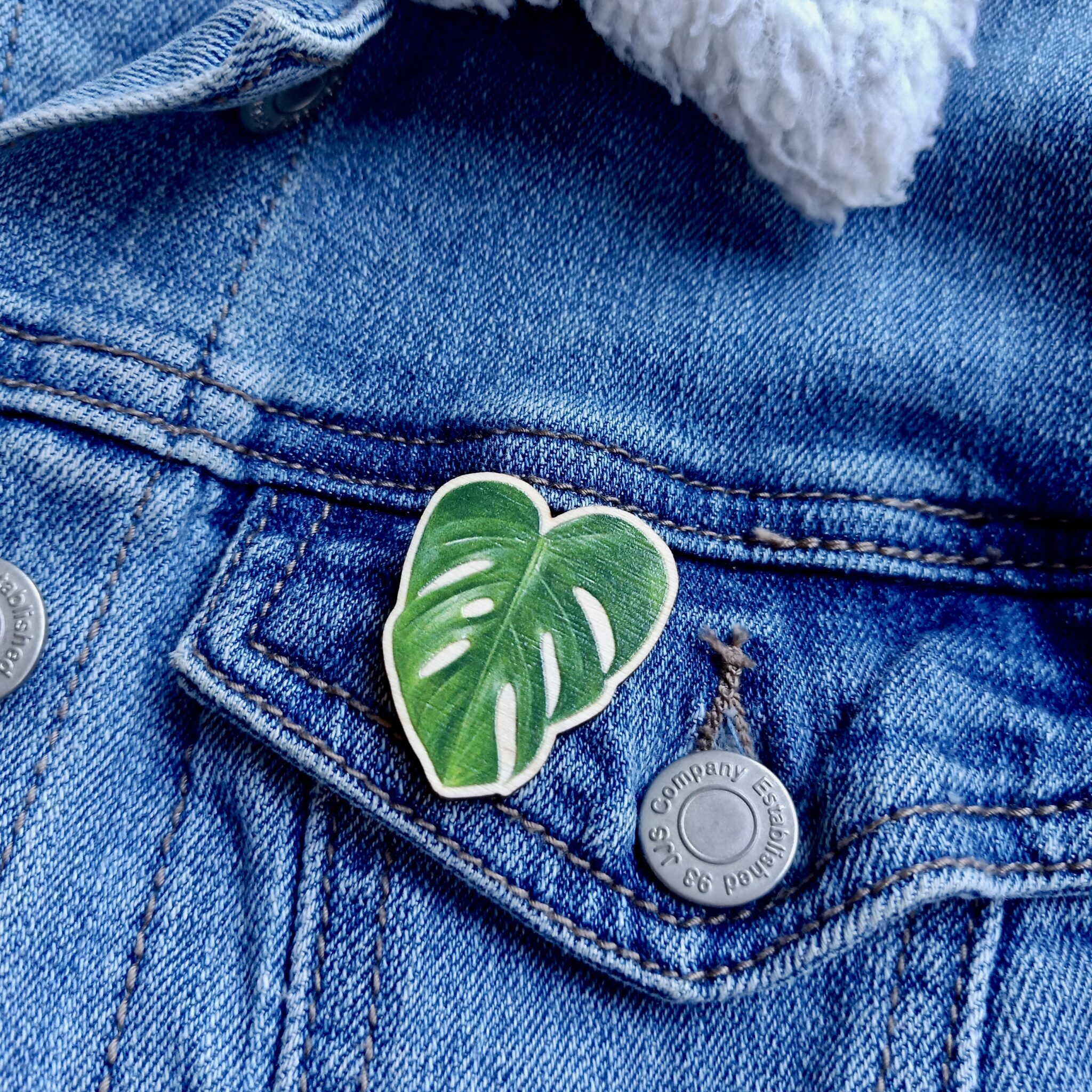 Monstera Deliciosa Wooden Pin By Rebecca Pidgeon
