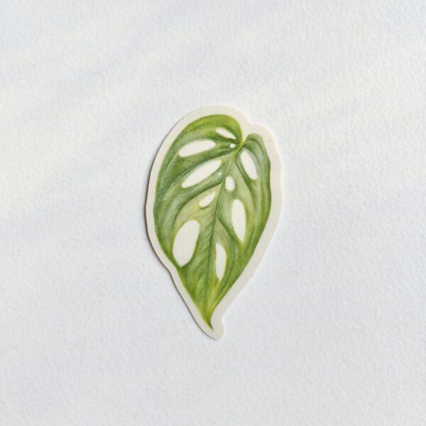leafy-by-rebecca-pidgeon-by-Rebecca Pidgeon