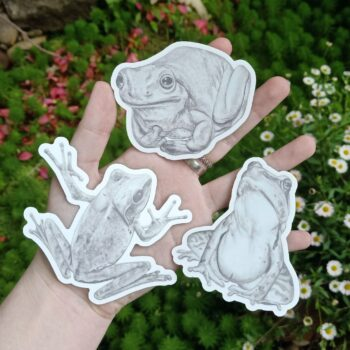 bundle-of-frogs-black-and-white-by-rebecca-pidgeon-by-Rebecca Pidgeon