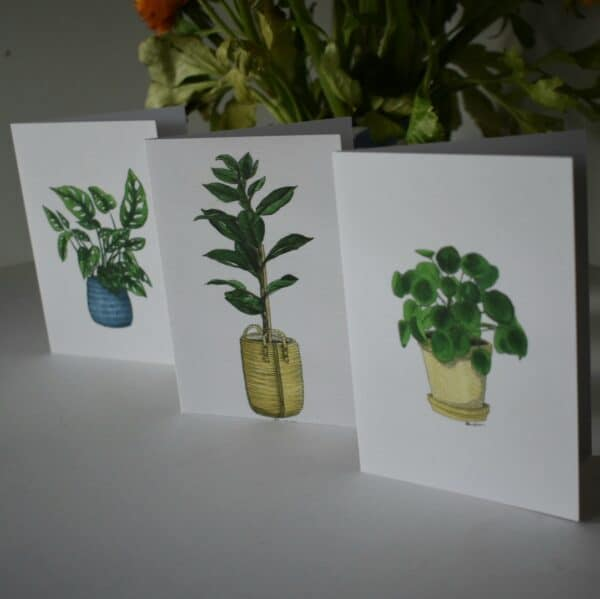 potted-plants-three-card-pack-botanical-collection-sarah-sheldon-art-by-a-vibrant-nest-by-avibrantnest