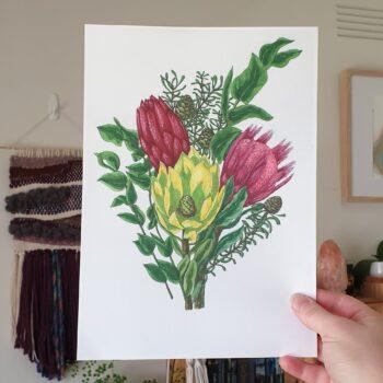 protea-bunch-a4-art-print-botanical-collection-sarah-sheldon-art-by-a-vibrant-nest-by-avibrantnest