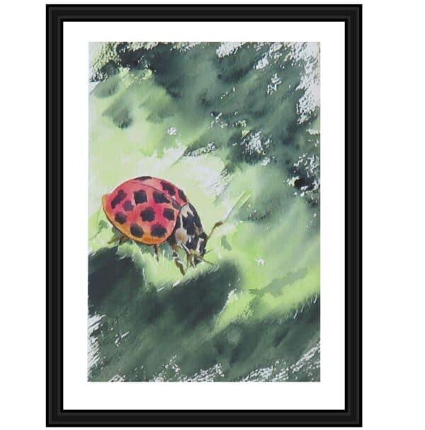 lilleth-ladybird-takes-a-sip-a-limited-edition-giclee-print-by-watercolour-artist-carin-lavery-by-Carin Lavery