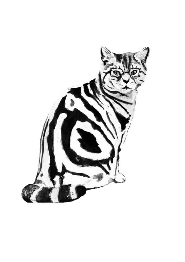 magic-minerva-cat-original-watercolour-painting-by-amanda-wells-art-by-amandawells