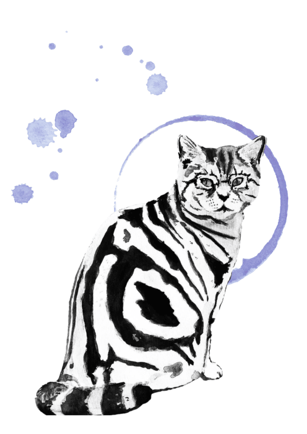 minerva-magic-cat-greeting-card-watercolour-amp-ink-illustration-by-amanda-wells-art-by-amandawells